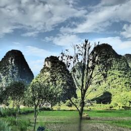 Les paysages de Yanghsuo, montagnes karstiques